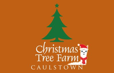 Caulstown Christmas Tree Farm